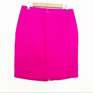 Dalia Collection Modern Fit Skirt Size 8